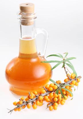 Sea Buckthorn Oil and Vine of Berries